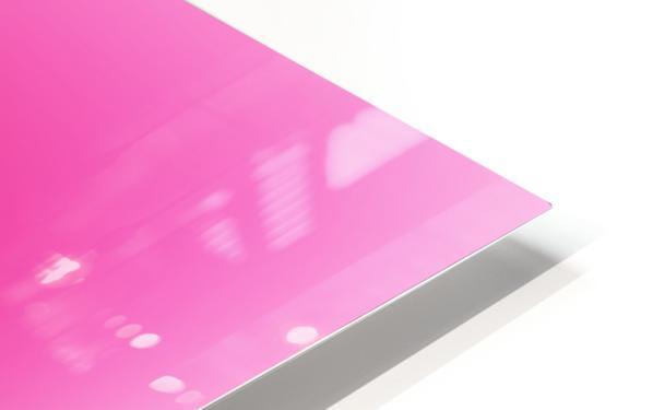 Rose Gradient Background HD Sublimation Metal print