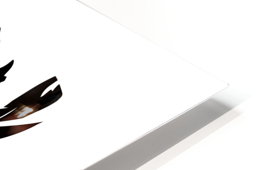 Head HD Sublimation Metal print