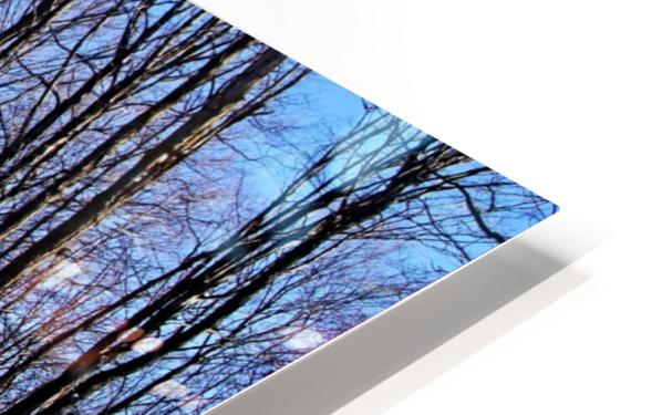 Snowy Woods HD Sublimation Metal print