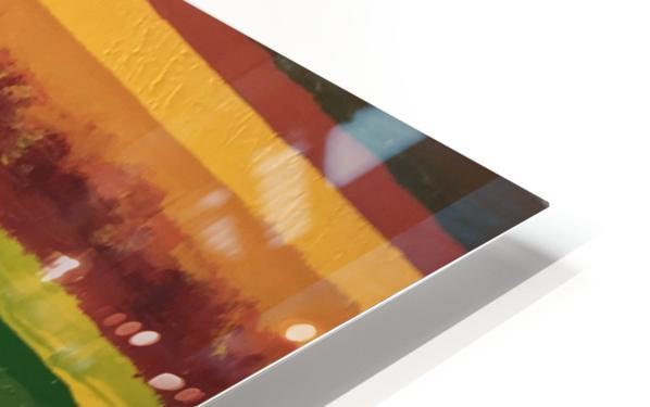 IMG_0524 HD Sublimation Metal print