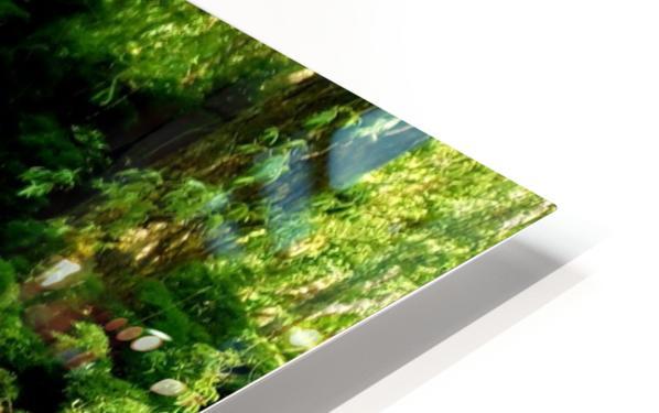 swan 11 HD Sublimation Metal print