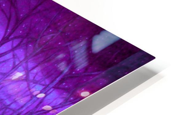 Forest Light HD Sublimation Metal print