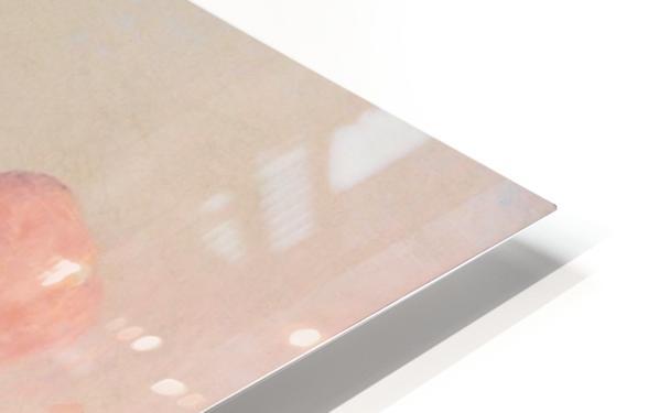 Sailer at Marais de la Grande Briere HD Sublimation Metal print