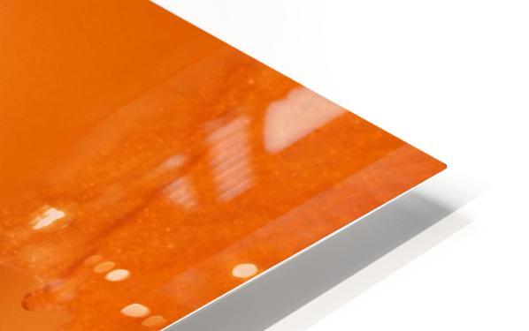 Orange Gladiola Ultra Close Up of Stamens HD Sublimation Metal print