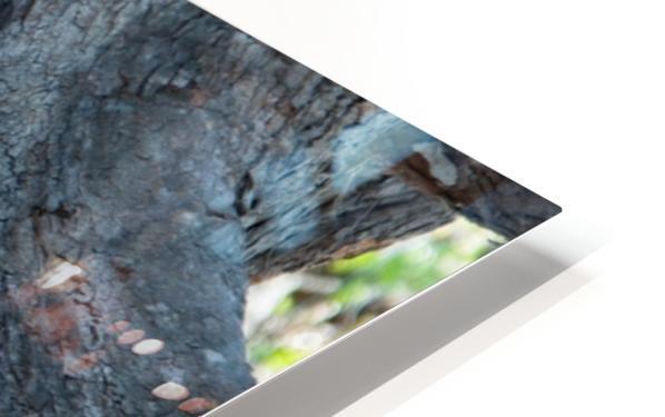 1 90 HD Sublimation Metal print