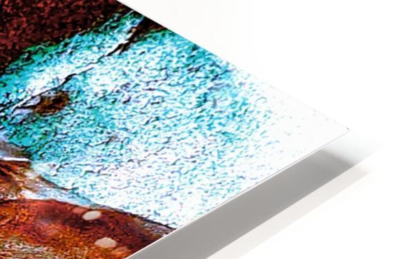 20180930_155257 HD Sublimation Metal print