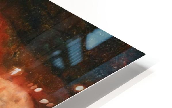 Nude (2) HD Sublimation Metal print