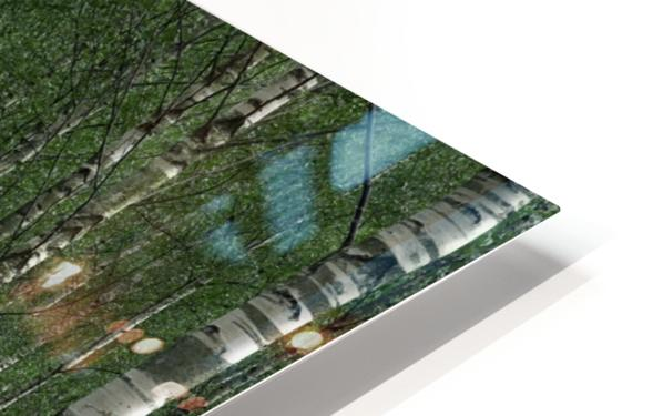 The tunnel HD Sublimation Metal print