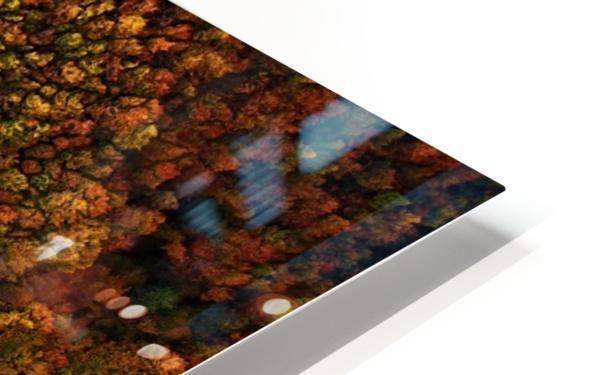Serpentine column HD Sublimation Metal print