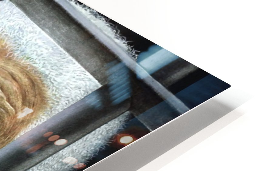 17 Krzysztof Grzondziel HD Sublimation Metal print