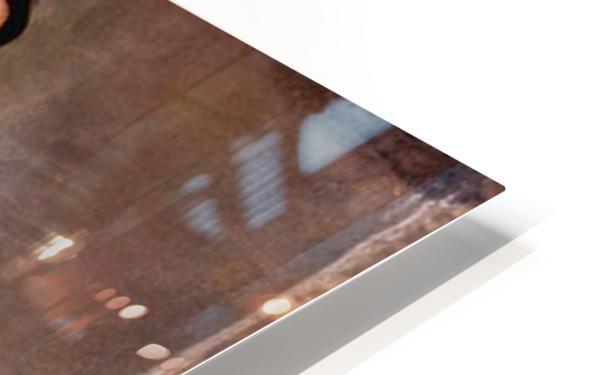 Louise-Delphine Duchosal by Ferdinand Hodler HD Sublimation Metal print