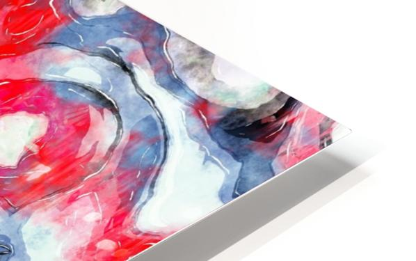 CLARITY HD Sublimation Metal print