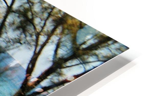 Ocean8 HD Sublimation Metal print