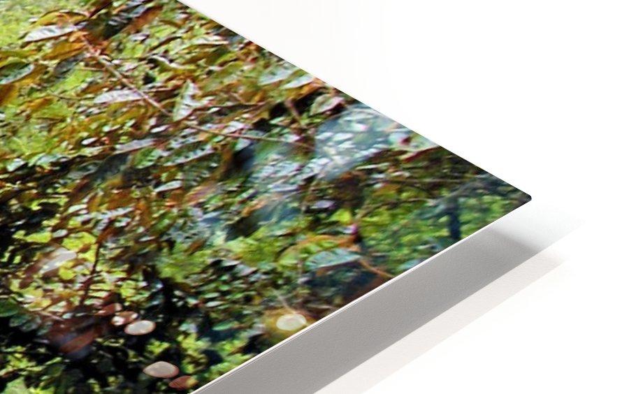 River7 HD Sublimation Metal print