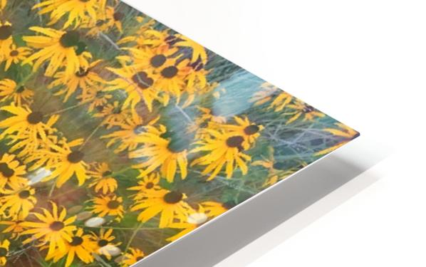 Behind the Scenes HD Sublimation Metal print