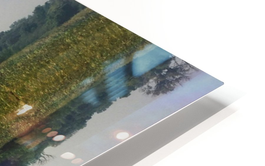 Coming to the Surface HD Sublimation Metal print