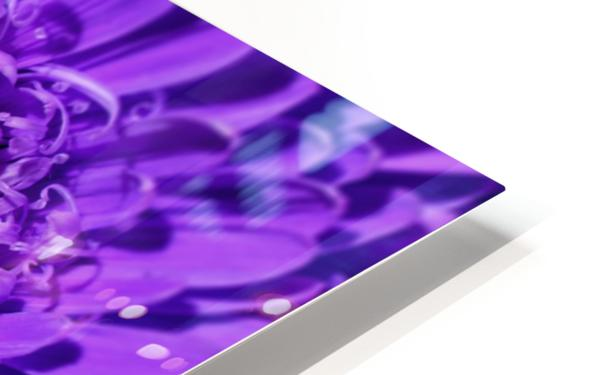 BLOSSOM HD Sublimation Metal print