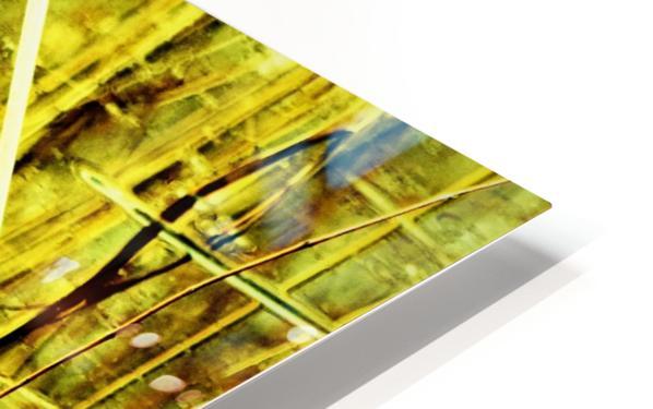 DSC_0129 (2)_LI HD Sublimation Metal print