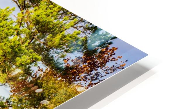 From Here HD Sublimation Metal print