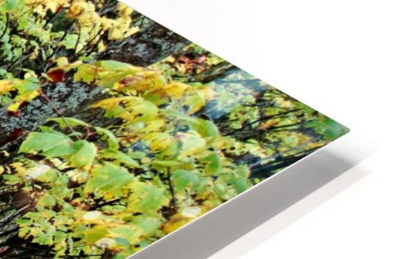 Chikanishing Trail HD Sublimation Metal print