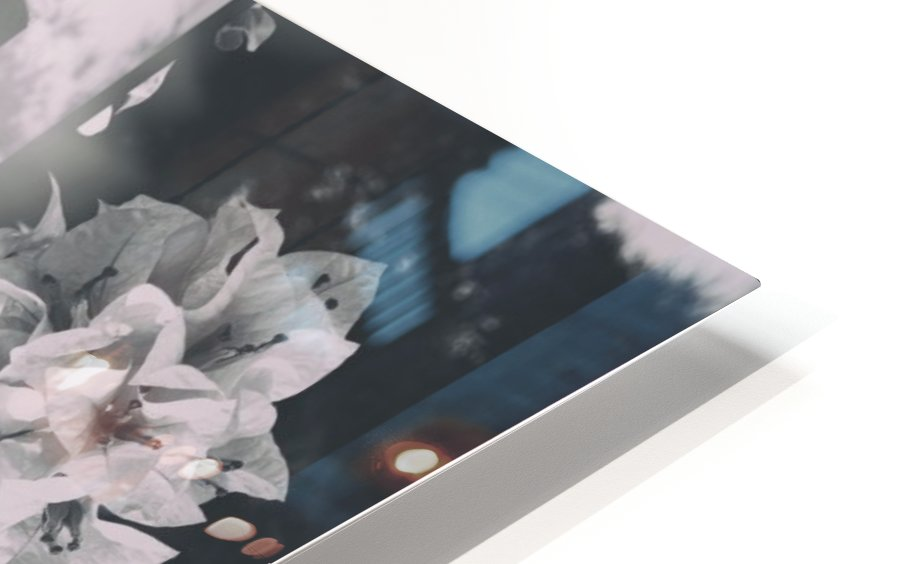 Bougainvillea Collage B&W HD Sublimation Metal print