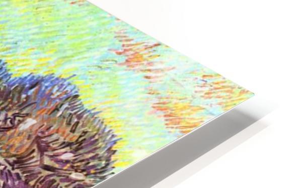 Olive Trees -2- by Van Gogh HD Sublimation Metal print