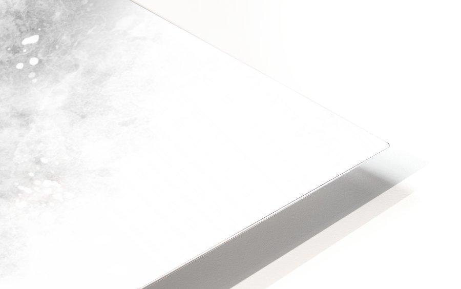 Monochrome Art EIFFEL TOWER | watercolor HD Sublimation Metal print