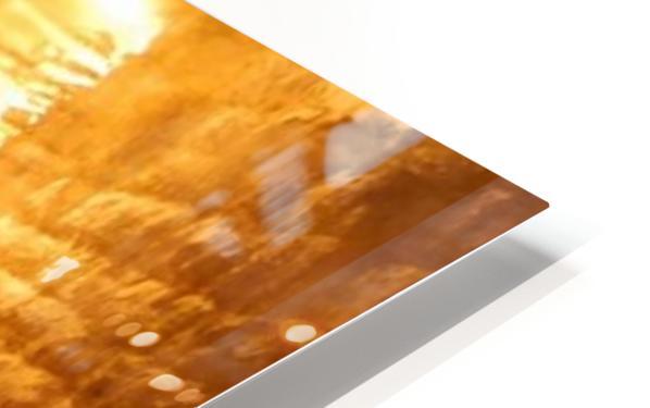 DSC_0111 HD Sublimation Metal print
