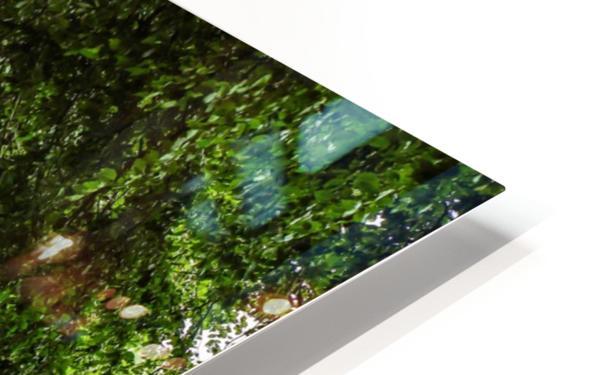 Beautiful Nature Landscape Tree Forest Trees Photography landscape photo Scenery Impression de sublimation métal HD