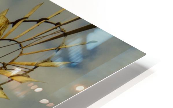 Aeromotor Windmill HD Sublimation Metal print