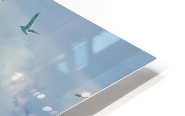 Aqua HD Sublimation Metal print