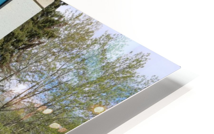 Red Willow Trail HD Sublimation Metal print