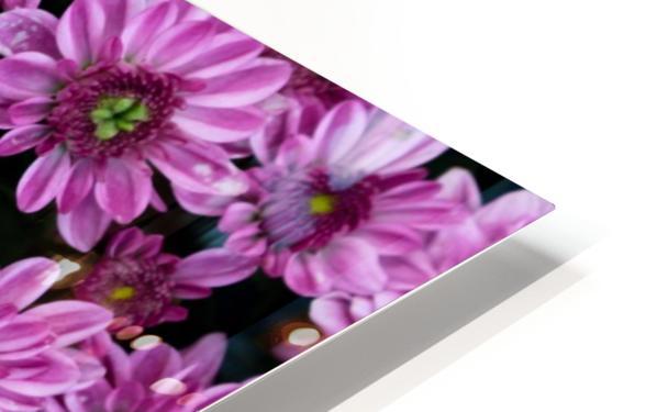 Purple flowre HD Sublimation Metal print