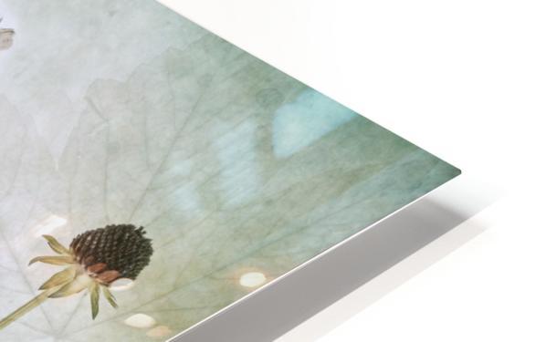 Allium HD Sublimation Metal print