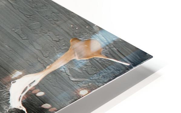 3013 - nobody else HD Sublimation Metal print