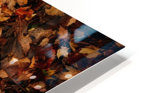 Feuilles mortes Impression de sublimation métal HD