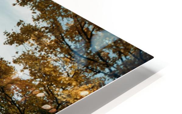 Route dautomne Impression de sublimation métal HD