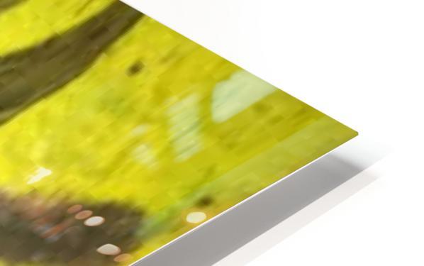 0 14 3 HD Sublimation Metal print