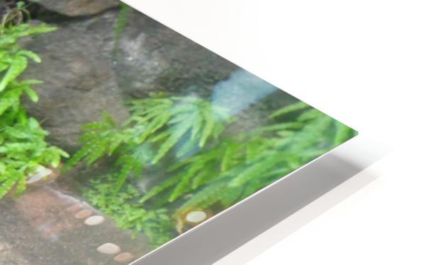 DSC00125 2 copy HD Sublimation Metal print
