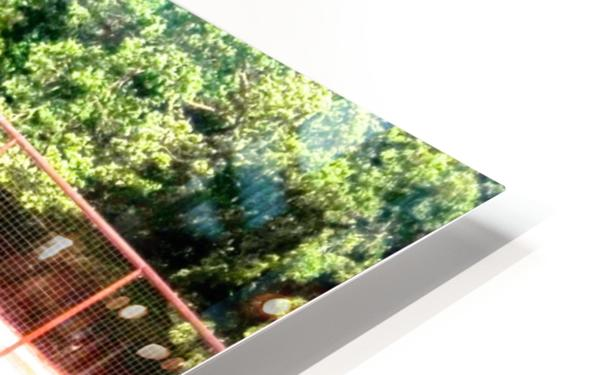 100_0842 4 HD Sublimation Metal print