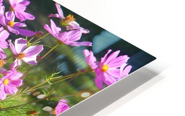 Alaskan Bouquet Impression de sublimation métal HD