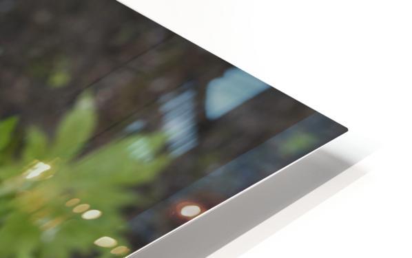 Wood Anenome HD Sublimation Metal print