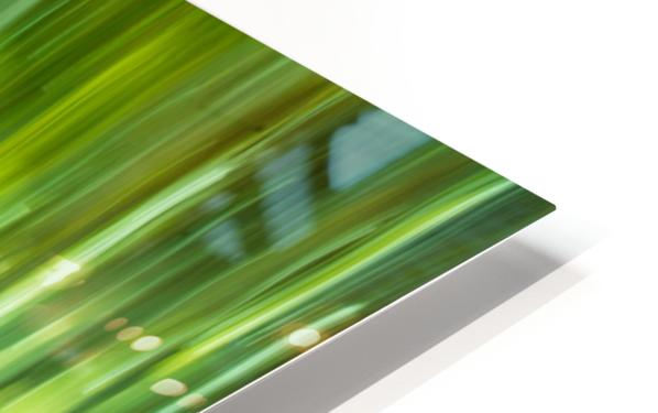 Moving Trees 12 Green Landscape 52-70 360px Impression de sublimation métal HD