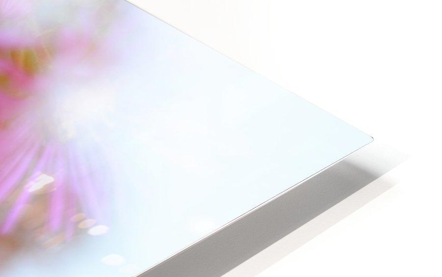 Fleur et ciel HD Sublimation Metal print