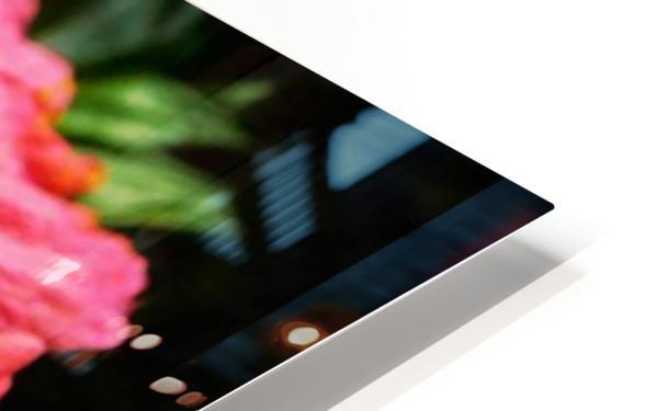 close up HD Sublimation Metal print
