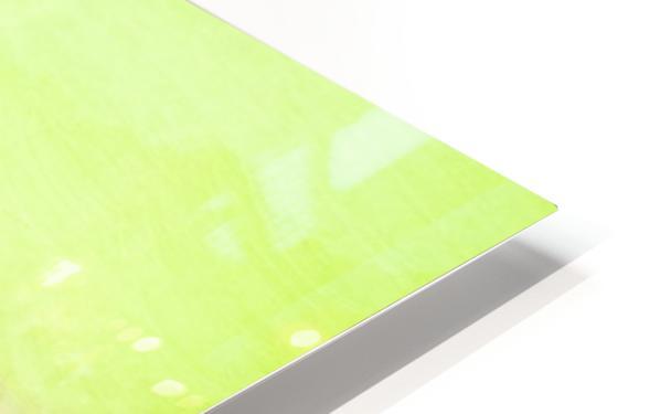 78109C58 DA0A 4B60 81EB 3CEDBC313EC1 HD Sublimation Metal print