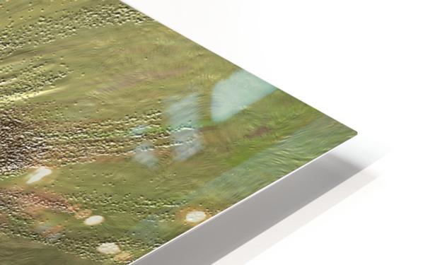 Acid etch HD Sublimation Metal print