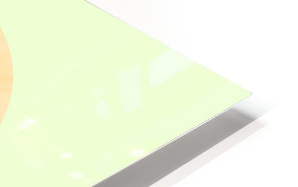 Rabbit HD Sublimation Metal print