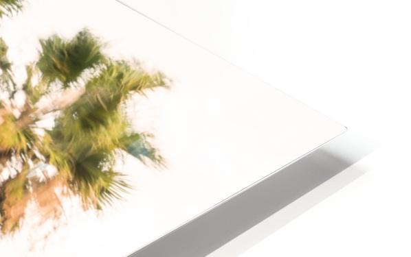 SWAYING PALMS HD Sublimation Metal print