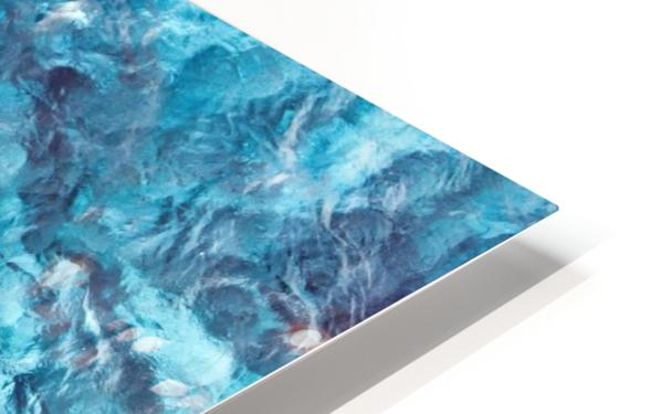 Tropical XXI HD Sublimation Metal print